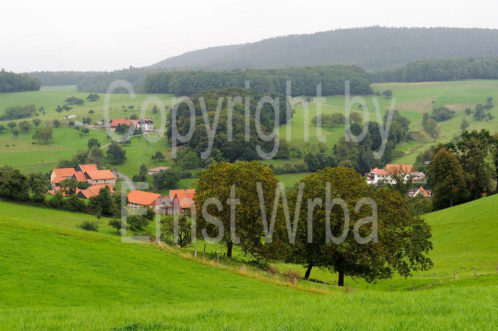 romantisches Tal, Wald, Bäume, Bauernhäuser, Rohrbach, Odenwald, Naturpark Bergstraße-Odenwald, Hessen, Deutschland   romantic valley, Rohrbach, Odenwald, Hessen, Germany
