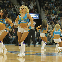 30 January 2009:  The New Orleans Hornets, Honeybees cheerleaders perform during a 91-87 loss by the New Orleans Hornets to Golden State Warriors at the New Orleans Arena in New Orleans, LA.