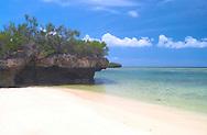 'Champignon' rocks and a white sandy<br /> beach on the island of Aldabra<br /> The Seychelles<br /> c. Ellen Rooney