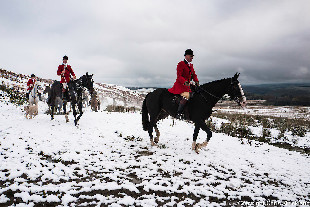 Hawick, Scottish Borders, UK. 9th November 2016. The Duke of Buccleuch Hunt hold their opening meet in the snow near Hawick in the Scottish Borders.