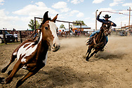 Ranch Rodeo, Ingomar, Montana