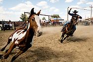 Ranch Rodeo, Ingomar, Montana