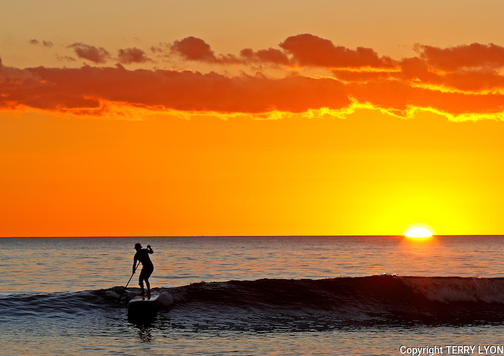 A stand up paddle board rider catches his last wave for the day at sunset Cottesloe Beach Western Australia.