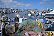 Israel, Bay of Haifa, The Kishon Port. used by fisherman and yacht owners