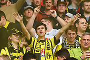 Phoenix fan during their Hyundai A League match. Wellington Phoenix v Melbourne City FC. Westpac Stadium, Wellington, New Zealand. Saturday 26 January 2019. ©Copyright Photo: Chris Symes / www.photosport.nz