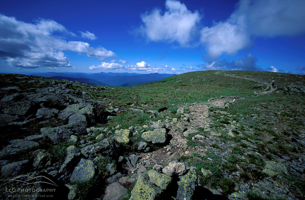 Backpacking. Crawford Path part of the Appalachian Trail. Above treeline near Mt. Monroe.  White Mountain N.F., NH