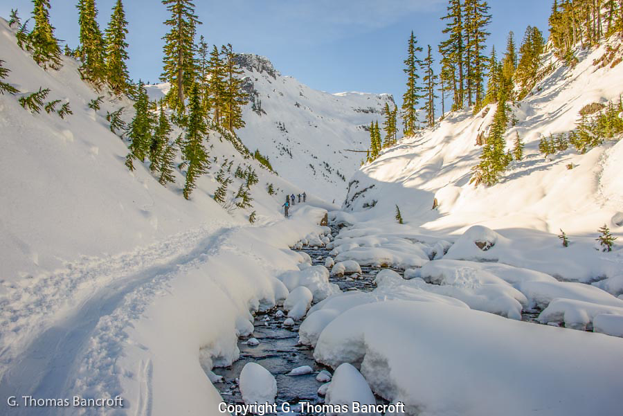 Fresh snow sparkled across the mountain while the creek gurgled and bubbled as it flowed along the snow banks.