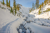 Bagley Creek - Mt Baker