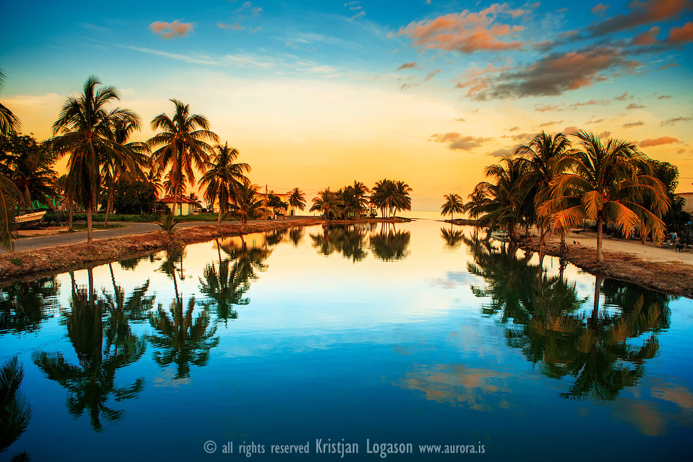 Coconut palms and reflection on a river at sunset in Dangriga, Belize