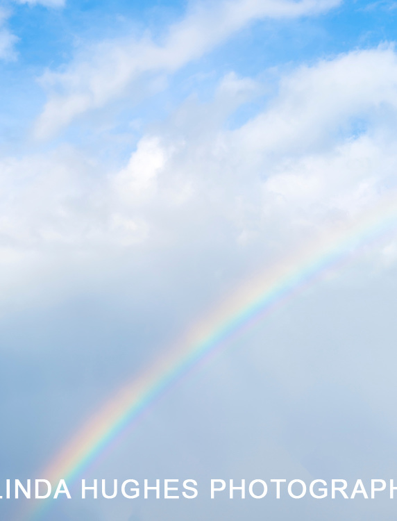 nature, rainbow, sky, environment, weather, vertical, natural, beauty