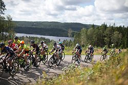 The rear of the front group rides near the top of the second categorised climb of Stage 3 of the Ladies Tour of Norway - a 156.6 km road race, between Svinesund (SE) and Halden on August 20, 2017, in Ostfold, Norway. (Photo by Balint Hamvas/Velofocus.com)