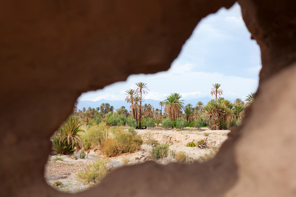 View of a date palm oasis through the hole of a clay wall.