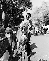 Young Weimaraner enjoying a beautiful day with his Mom in Central Park, NYC.