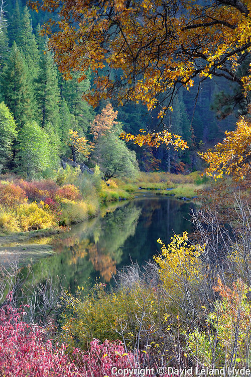 Indian Creek Below Indian Valley Near Taylorsville, Crescent Mills, Greenville, Plumas County, Northern Sierra Nevada, California Mountains, Fall Color, Fall Leaves, Black Oaks, Dogwood, Willows, Firs, Cedars, copyright 2009 by David Leland Hyde.