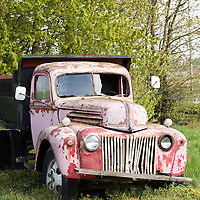 An old dump truck sits in the countryside by Amity, Oregon.