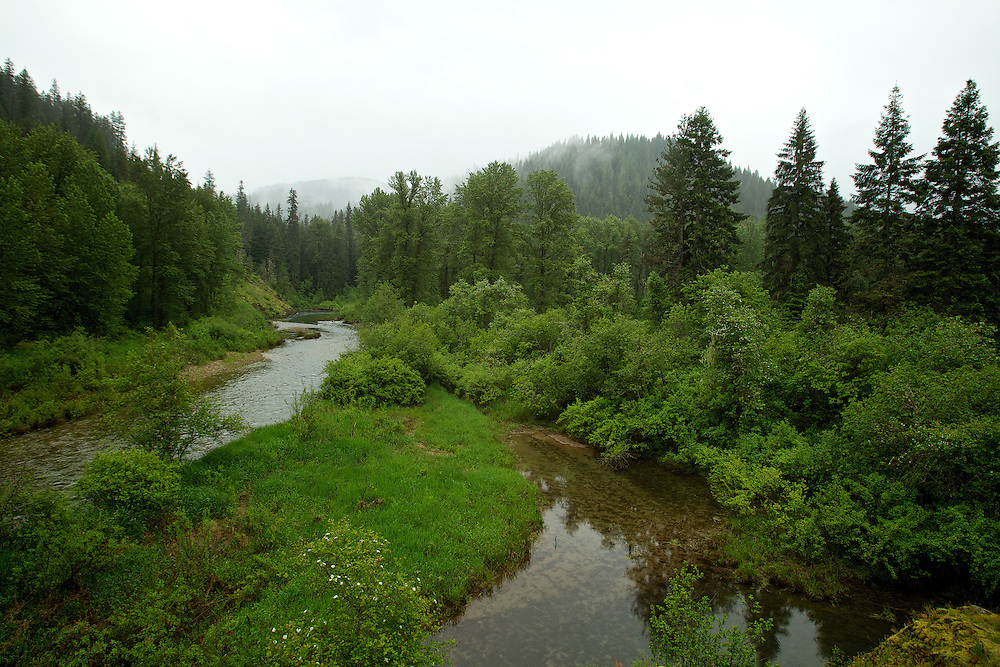 Spring runoff waters flow through Bumblebee Creek toward the Coeur d'Alene River during a break in the rainfall Monday.