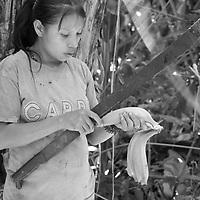 """Título: """"Cosechando bananos verdes - Tsimari""""<br /> Técnica: Impresión digital en papel de algodón.<br /> Dimensiones: 20"""" x 30"""" pulgadas<br /> Precio $ 2,400.00 USD **El 25% del precio va destinado a comunidades indígenas.<br /> Autor: Melanie L. Wells-Alvarado<br /> +(506) 8753-8231   www.melwellsphotography.com www.awindowintothesoul.com"""