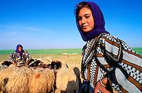 Syrie - Qasr Ibn Wardan - Jeune bergere