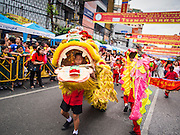 "19 FEBRUARY 2015 - BANGKOK, THAILAND: Lion dancers perform for Chinese New Year on Yaowarat Road in Bangkok. 2015 is the Year of Goat in the Chinese zodiac. The Goat is the eighth sign in Chinese astrology and ""8"" is considered to be a lucky number. It symbolizes wisdom, fortune and prosperity. Ethnic Chinese make up nearly 15% of the Thai population. Chinese New Year (also called Tet or Lunar New Year) is widely celebrated in Thailand, especially in urban areas that have large Chinese populations.    PHOTO BY JACK KURTZ"