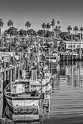Port of Los Angeles, San Pedro. CA. Southern California,