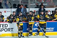 REGINA, SK - MAY 22: The Hamilton Bulldogs bench at the Brandt Centre on May 22, 2018 in Regina, Canada. (Photo by Marissa Baecker/CHL Images)