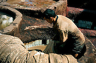 Morocco, Fez. Man working in a traditional tannery.