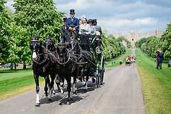 © Licensed to London News Pictures. 12/05/2017. Windsor, UK. Participants in the Coaching Marathon race drive down The Long Walk in front of Windsor Castle, on day three of the Royal Windsor Horse show.  The five day equestrian event takes place in the grounds of Windsor Castle. Photo credit: Ben Cawthra/LNP