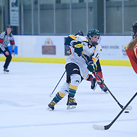 4th year defender Nikki Watters-Matthes (14) of the Regina Cougars in action during the Women's Hockey Home Game on November 26 at Co-operators arena. Credit: Arthur Ward/Arthur Images