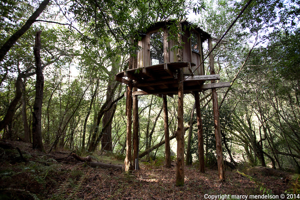 Hidden in the dense forest of Druid Heights stands the treehouse Ed Stiles built in secret where he could seek solitude from the chaos of the 'unintentional community'.  It stands on precarious stilts and is on the verge of collapsing.  A peek from the ground reveals bedding and books still inside the elevated room.