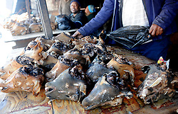 Cape Town-180829  The Sheep head also know as Smiley is very popular in the township it used to be cooked only if threr was traditional cremony nowadays there are many places that clean and sell this delicacy,cooked or uncooked  Pictures Ayanda Ndamane/African/news/agency ANA