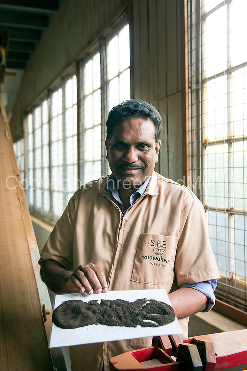 Tea maker, Victor Kingsley, at Mattakele Factory, owned by Talawakelle estates. He has got the best prices over the past so many years. Must get his name correct.<br /> HIGHEST PRICES FOR TEA