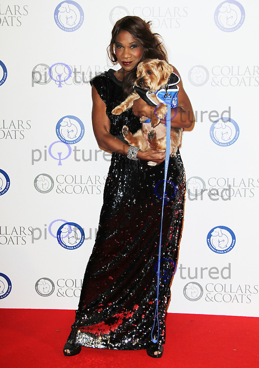 Karen Bryson Battersea Dogs & Cats Home Collars & Coats Gala Ball, Battersea Evolution, London, UK. 11 November 2011. Contact rich@pictured.com +44 07941 079620 (Picture by Richard Goldschmidt)