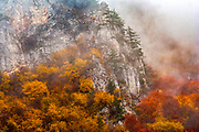 Mountain slope rounded of colorful forest and fog