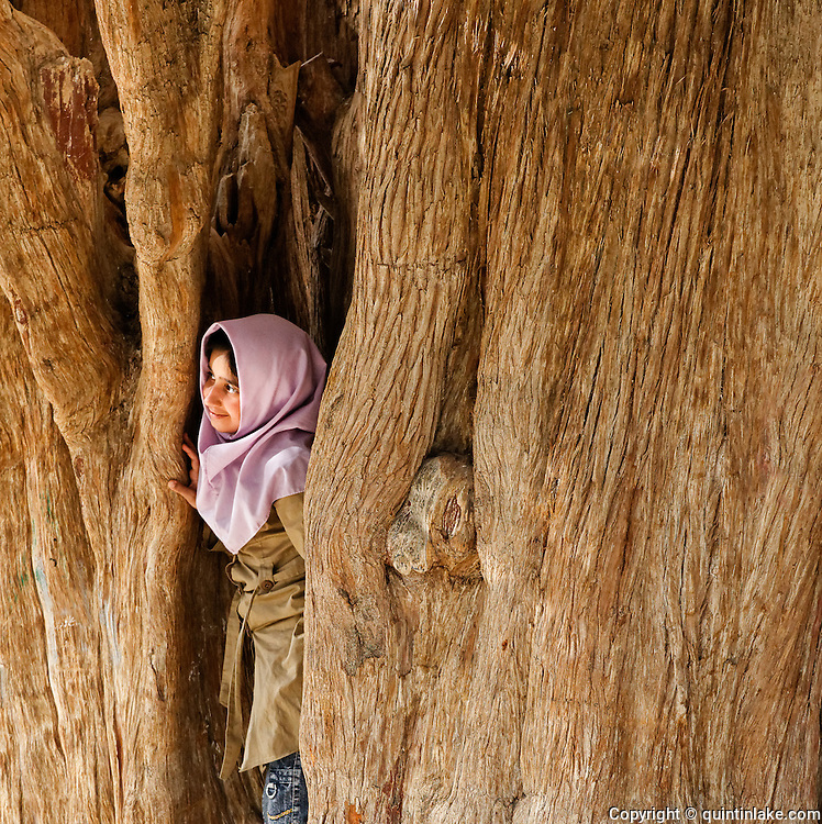 "An Iranian girl looks out from the trunk of Sarv-e Abar-Kuh (Persian: ??? ???????, ""cypress of Abar-Kuh""), also called the Zoroastrian Sarv, is a Cupressus sempervirens tree in Abarkuh, Yazd Iran. It is estimated to be over four thousand years old and may be the oldest living thing in Asia."