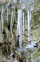 Close-up of icicles on a cliff face.