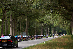 The peloton head into the woods at Boels Ladies Tour 2019 - Stage 5, a 154.8 km road race from Nijmegen to Arnhem, Netherlands on September 8, 2019. Photo by Sean Robinson/velofocus.com