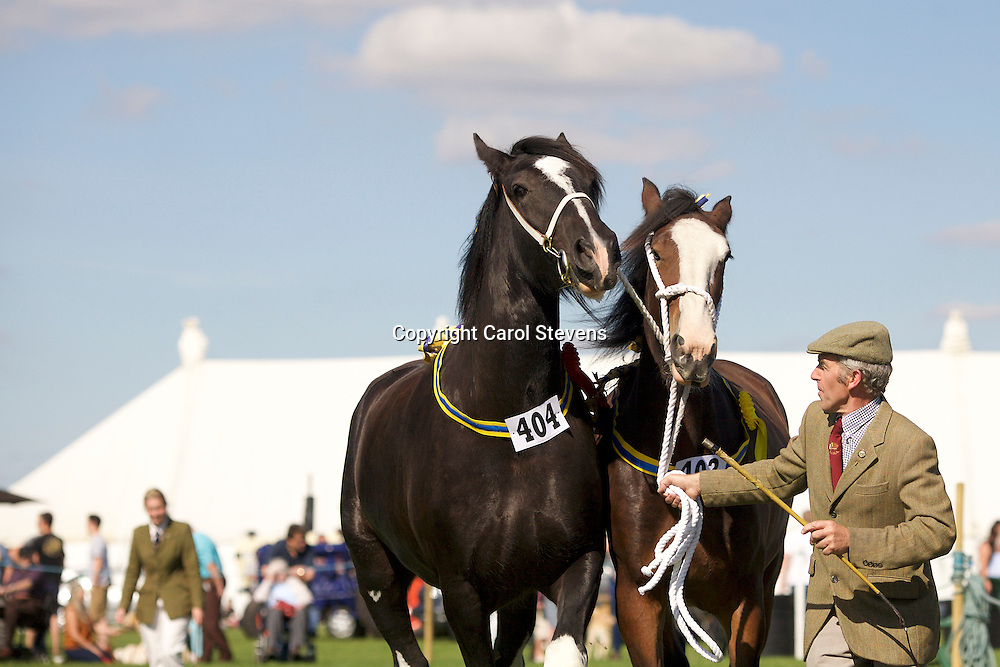 David Cosgrove<br />