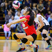 Crownpoint Eagle bumps back a serve from the Tohatchi Cougars Tuesday at Tohatchi High School.