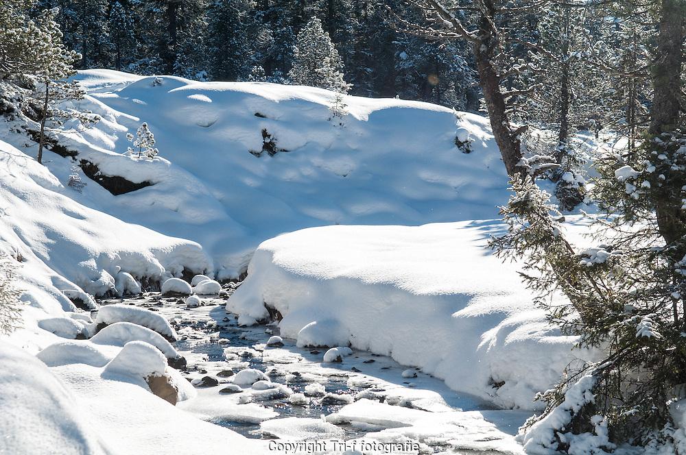 Moorlandschaft Glaubenberg im Winter