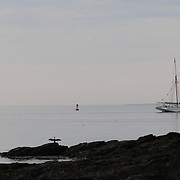 A cormorant dries its wings as Tall ship Gazela passes by Whaleback Lighthouse off New Castle, NH. Gazela heads out to sea after attending Sail Portsmouth 2011 in Portsmouth, NH