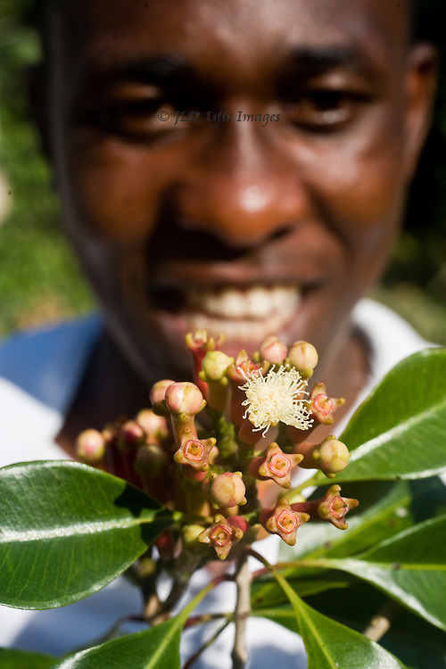 Young worker at the one remaining botanical garden in Zanzibar where the government tries to maintain the species of spices that made the island famous a century ago.
