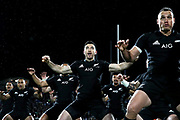NEW PLYMOUTH, NEW ZEALAND - SEPTEMBER 09:  Nehe Milner-Skudder of the All Blacks performs the haka during The Rugby Championship match between the New Zealand All Blacks and Argentina at Yarrow Stadium on September 9, 2017 in New Plymouth, New Zealand.  Photo by Phil Walter/POOL