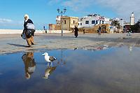Maroc, Essaouira, Patrimoine mondial de l'UNESCO // Morocco, Medina of Essaouira, Atlantic coast, Unesco world heritage