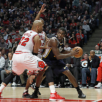 10 March 2012: Chicago Bulls forward Taj Gibson (22) and Chicago Bulls point guard John Lucas (15) defend on Utah Jazz power forward Paul Millsap (24) during the Chicago Bulls 111-97 victory over the Utah Jazz at the United Center, Chicago, Illinois, USA.