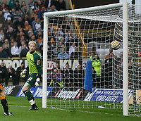 Photo: Steve Bond/Sportsbeat Images.<br /> Wolverhampton Wanderers v Bristol City. Coca Cola Championship. 03/11/2007. Wayne Hennessey watches in horror as Liam Fontaine's header drops into the net