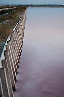 Il complesso produttivo delle saline è situato nel comune italiano di Margherita di Savoia (nome dato dagli abitanti in onore alla regina d'Italia che molto si adoperò nei confronti dei salinieri) nella provincia di Barletta-Andria-Trani in Puglia. Sono le più grandi d'Europa e le seconde nel mondo, in grado di produrre circa la metà del sale marino nazionale (500.000 di tonnellate annue).All'interno dei suoi bacini si sono insediate popolazioni di uccelli migratori e non, divenuti stanziali quali il fenicottero rosa, airone cenerino, garzetta, avocetta, cavaliere d'Italia, chiurlo, chiurlotello, fischione, volpoca..Nella foto si vede la palizzata di contenimento che viene realizzata sul margine di alcuni bacini per la raccolta ed evaporazione dell'acqua di mare.