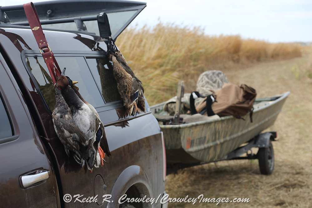 Boat, decoys, and ducks ready for travel back to camp during a Manitoba waterfowl hunt.