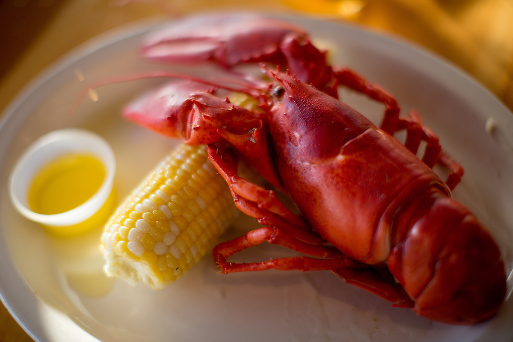 Maine lobster and corn