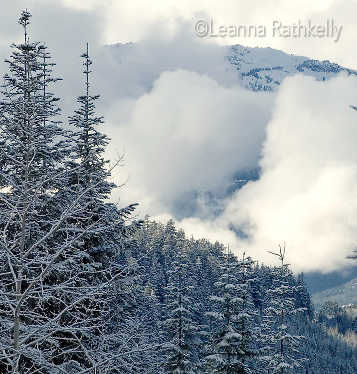Whistler Mountain rises above the clouds in winter,  BC Canada