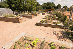 Garden at The Broadwaters Inclusive Learning Community, Tottenham, London Borough of Haringey July 2014. This is a collaboration between two local schools, The Willow Primary School & The Brook Primary Special School. UK